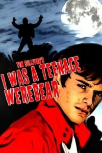 "Poster for the movie ""I Was a Teenage Werebear"""