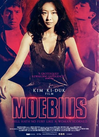 "Poster for the movie ""Moebius"""