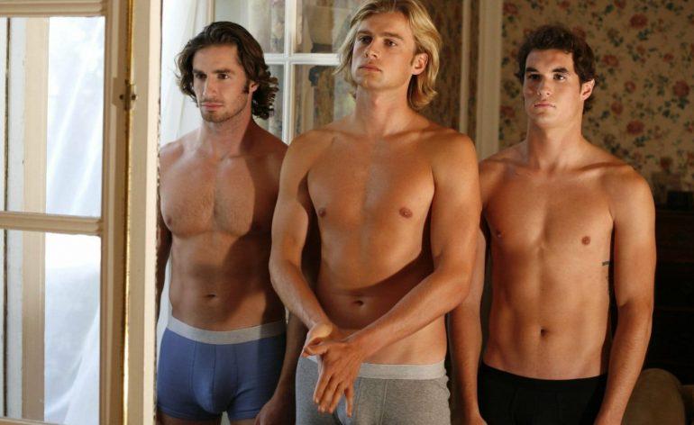 Gay Films 2008