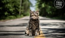 New trailer for Pet Sematary!!